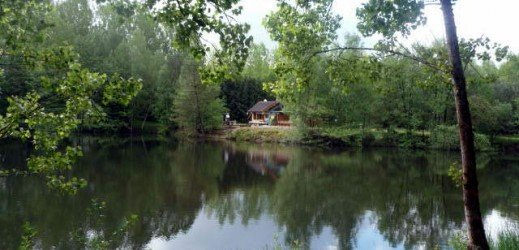 Chalet + étang sur 2 hectares